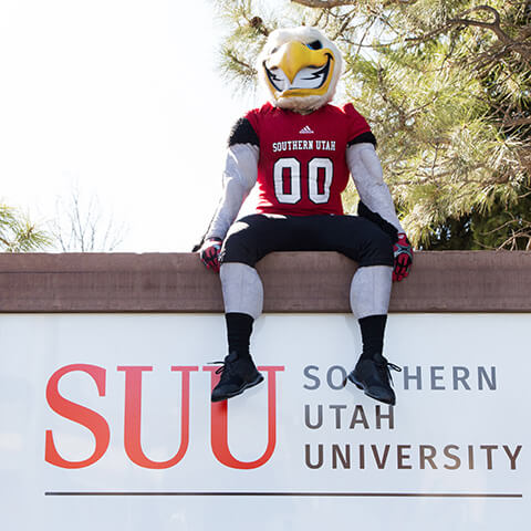 Thor sitting on top of an SUU sign.