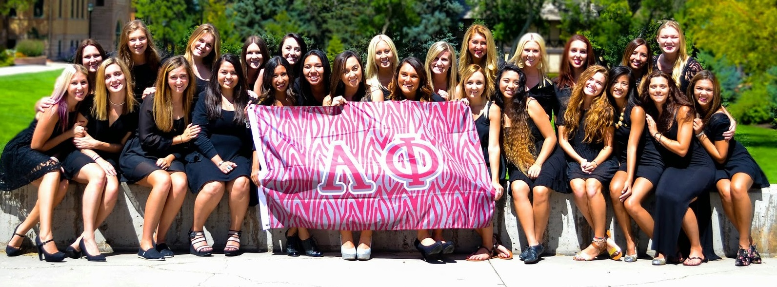 mission alpha phi international fraternity is a membership organization dedicated to promoting sisterhood cultivating leadership encouraging intellectual